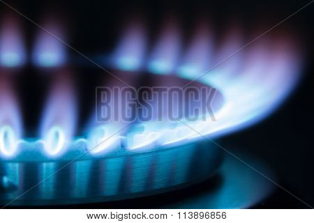 Gas Burner Flame. Maximum Flame