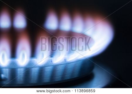 Gas Burner Flame. Low Flame