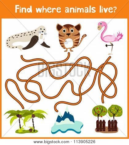 Fun And Colorful Puzzle Game For Children's Development Find Where A Walrus, Pink Flamingos, And