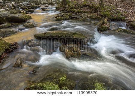 Stream Winding Through A Forest - Tennessee