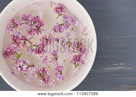 Fresh lilac flower petals floating on water in the white ceramic bowl on blue painted background.