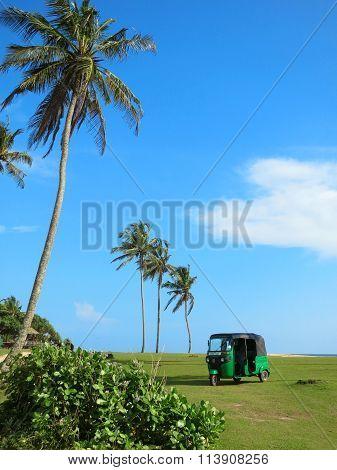 Little green tuk-tuk at grass field near palms, Sri Lanka