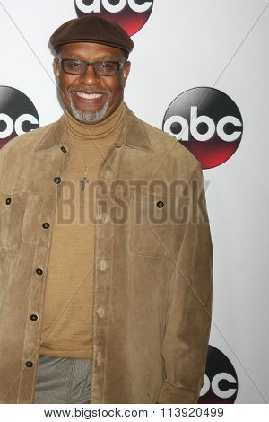LOS ANGELES - JAN 9:  James Pickens Jr. at the Disney ABC TV 2016 TCA Party at the The Langham Huntington Hotel on January 9, 2016 in Pasadena, CA