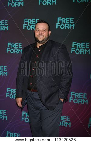 LOS ANGELES - JAN 9:  Daniel Franzese at the Disney ABC TV 2016 TCA Party at the The Langham Huntington Hotel on January 9, 2016 in Pasadena, CA