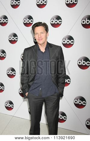 LOS ANGELES - JAN 9:  Andrew McCarthy at the Disney ABC TV 2016 TCA Party at the The Langham Huntington Hotel on January 9, 2016 in Pasadena, CA