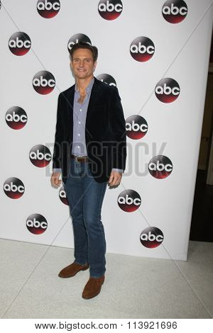 LOS ANGELES - JAN 9:  Tony Goldwyn at the Disney ABC TV 2016 TCA Party at the The Langham Huntington Hotel on January 9, 2016 in Pasadena, CA