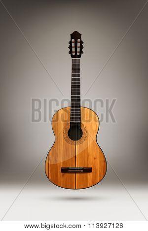vector acoustic guitar illustration