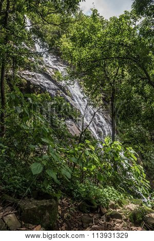 Small stream of water flowing down through rocks and greenery.