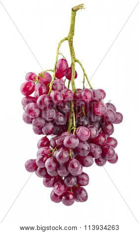 Cluster fresh grapes ripe fruit. Isolated on white background