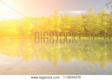 Landscape of trees with reflection on lake under blue sky.