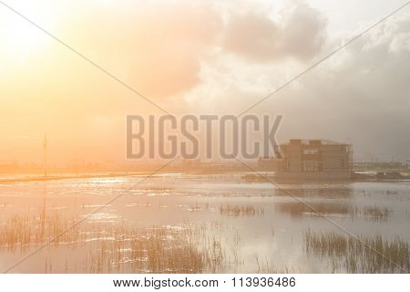 Landscape with a swamp, shot at Yilan county, Taiwan, Asia.