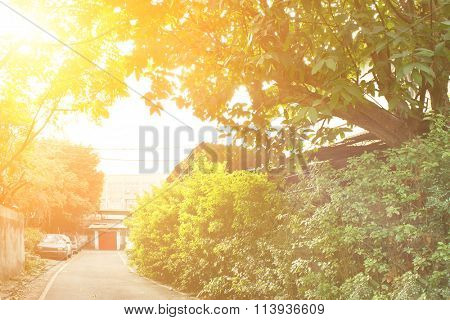 Township scenery with green trees and buildings with red door in morning in Taiwan, Asia.
