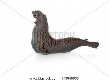 toy sea elephant