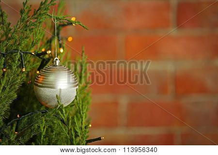 Christmas silver bauble on a fir tree branch