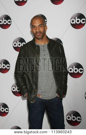 LOS ANGELES - JAN 9:  Reggie Austin at the Disney ABC TV 2016 TCA Party at the The Langham Huntington Hotel on January 9, 2016 in Pasadena, CA