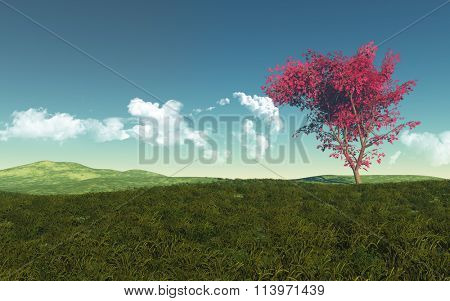 3D render of a maple tree in a grassy landscape