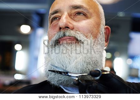 senior man in barber shop. barber cutting beard with scissors