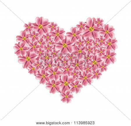 Old Rose Yarrow Flowers in A Heart Shape