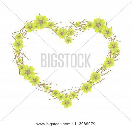 Yellow Yarrow Flowers Forming in Heart Shape