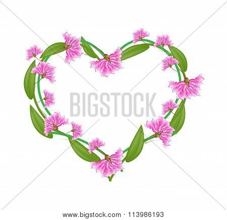Pink Crape Myrtle Flowers in A Heart Shape