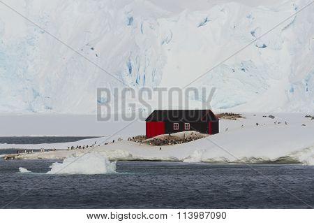 Port Lockroy, Base A, Heritage Site Antarctica