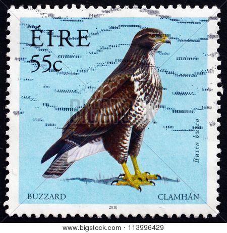 Postage Stamp Ireland 2010 Common Buzzard, Bird Of Prey