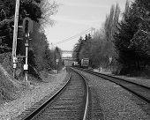 Rail Road W/ Bridge