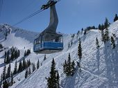 picture of snowbird  - tram at snowbird mountain resort - JPG