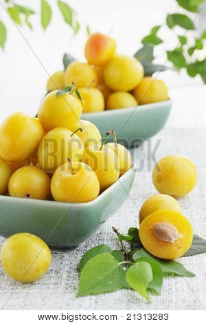 Yellow Damson Plum