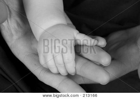Baby Hands 2