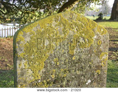 Mossy Headstone