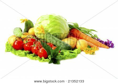 Vegetable Allsorts Isolated On White Background