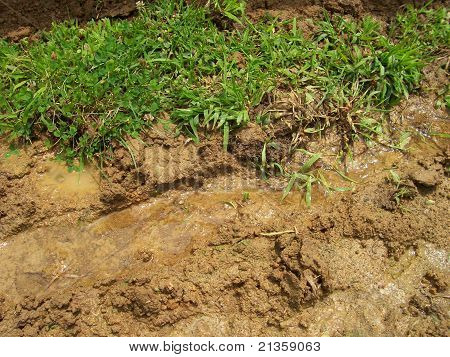 Ground Erosion