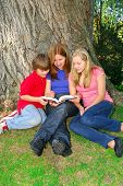 stock photo of girl reading book  - Portrait of a family  - JPG