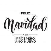 Christmas Feliz Navidad Spanish Ano Nuevo New Year Hand Drawn Calligraphy Lettering Vector Greeting poster