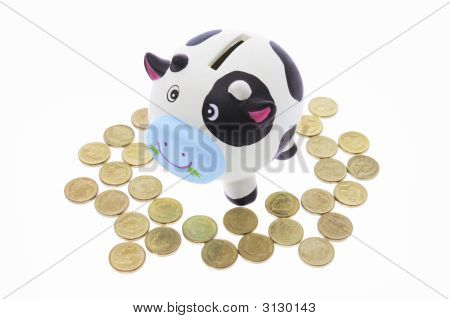 Cow Saving Bank