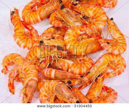 Shrimps At Fishmarket