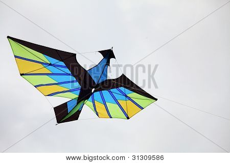 Cha-am - March 9: Colorful Kites In The 12Th Thailand International Kite Festival