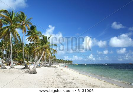 Caribbean Resort Beach