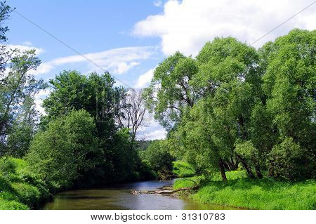 Summer Landscape With River