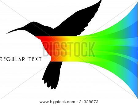 Vector Abstract Colibri Illustration