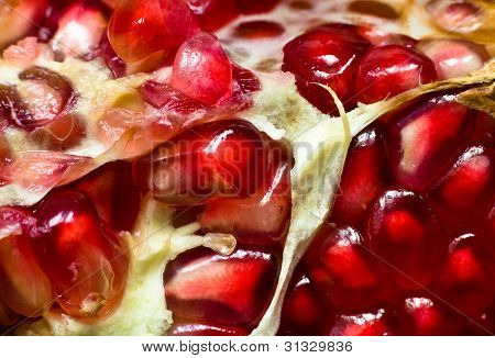 Slice Of Juicy Pomegranate