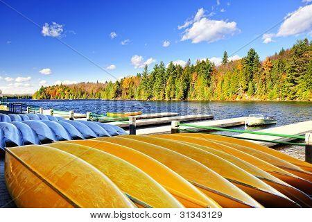 Alquiler de canoas en el lago de otoño