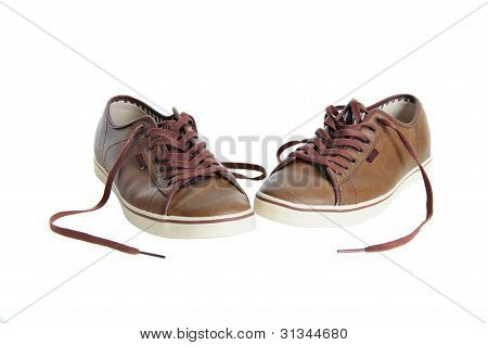 Brown Leather Sneakers Isolated