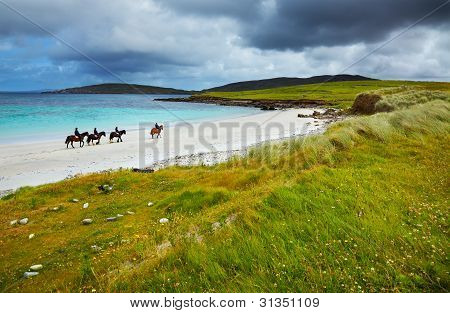 Horse And Riders On The Beach