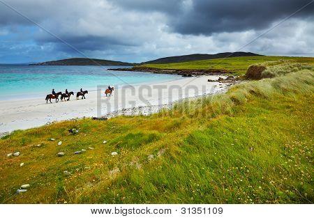 Cavalos e cavaleiros na praia