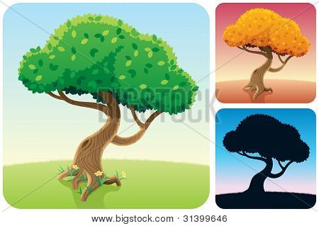 Tree Square Landscapes
