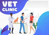 Pet Cat Owner Visiting And Talking To Vet Doctors. Pet Treatment, Consultation, Animal Care Concept. poster