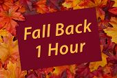 Time Change Greeting Card, Some Fall Leaves And A Greeting Card With Text Fall Back 1 Hour poster