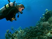 Woman Scuba Diver Looking At A School Of Fish